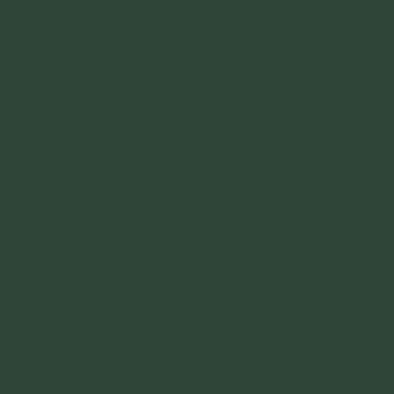 χρωμα ρολων αλουμινιου πολυουρεθανης 06-moss-green-RAL-6005