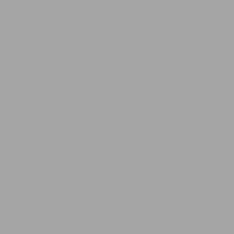 χρωμα ρολων πολυουρεθανης 38-sliver-RAL-9006